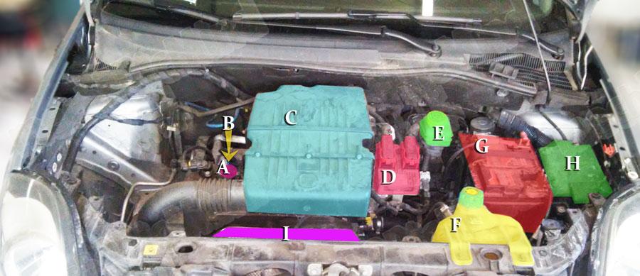 Figura 1: Vano motore Fiat Grande Punto 1.2 benzina
